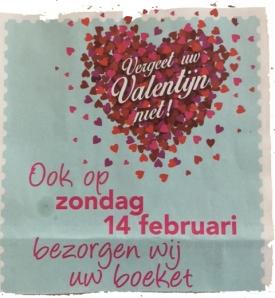 valentijn_rosarosa